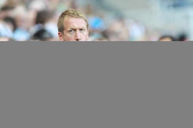 Graham Potter on the sideline against Newcastle. Picture: Richard Parkes.