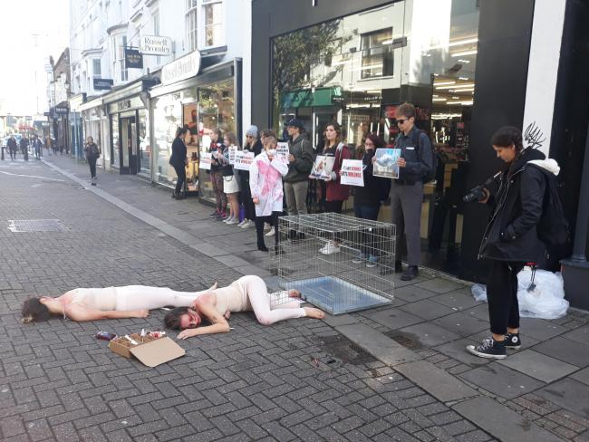 Vegans with human cage shut down cosmetics shop in latest protest