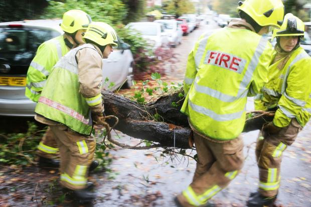 The Argus: A fire crew was called out to a fallen tree on the A27