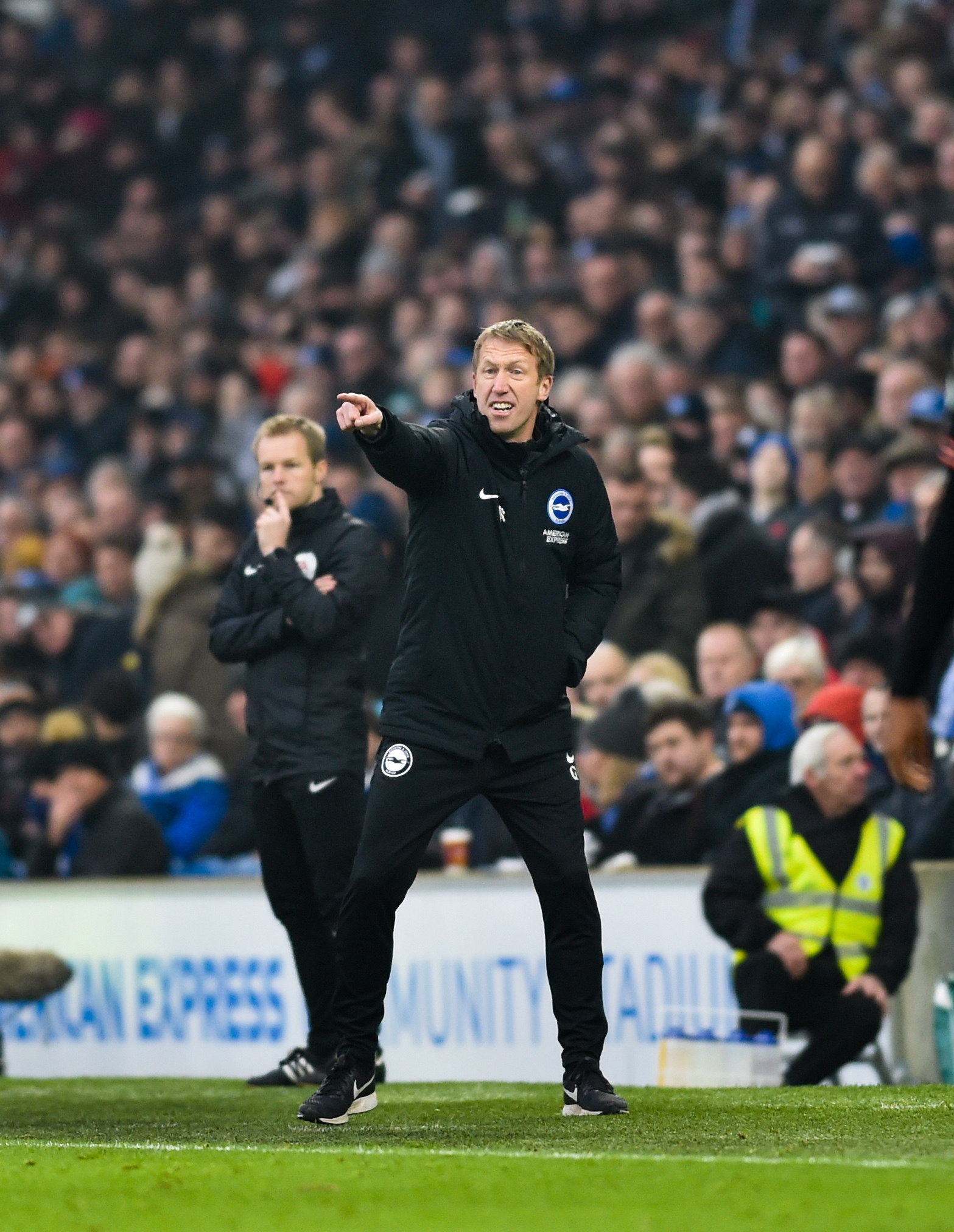 It's an inside job for Albion boss Graham Potter when it comes to opinions that matter