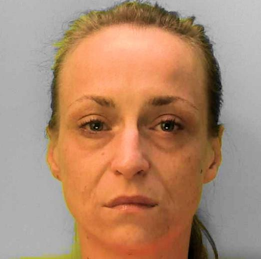 Police hunt for woman in connection with six Brighton burglaries