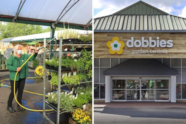 Garden centres in Sussex are set to reopen tomorrow, under the new guideline from the Government