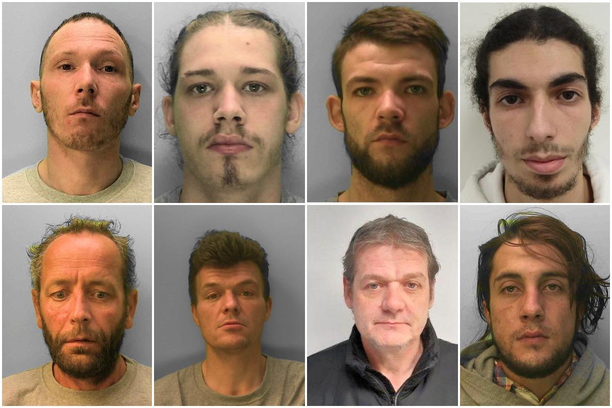 Sussex criminals jailed in November revealed