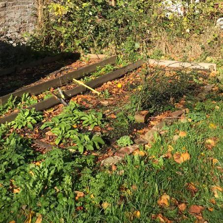 Brighton Women's refuge hope to transform the plot into a glorious vegetable garden.