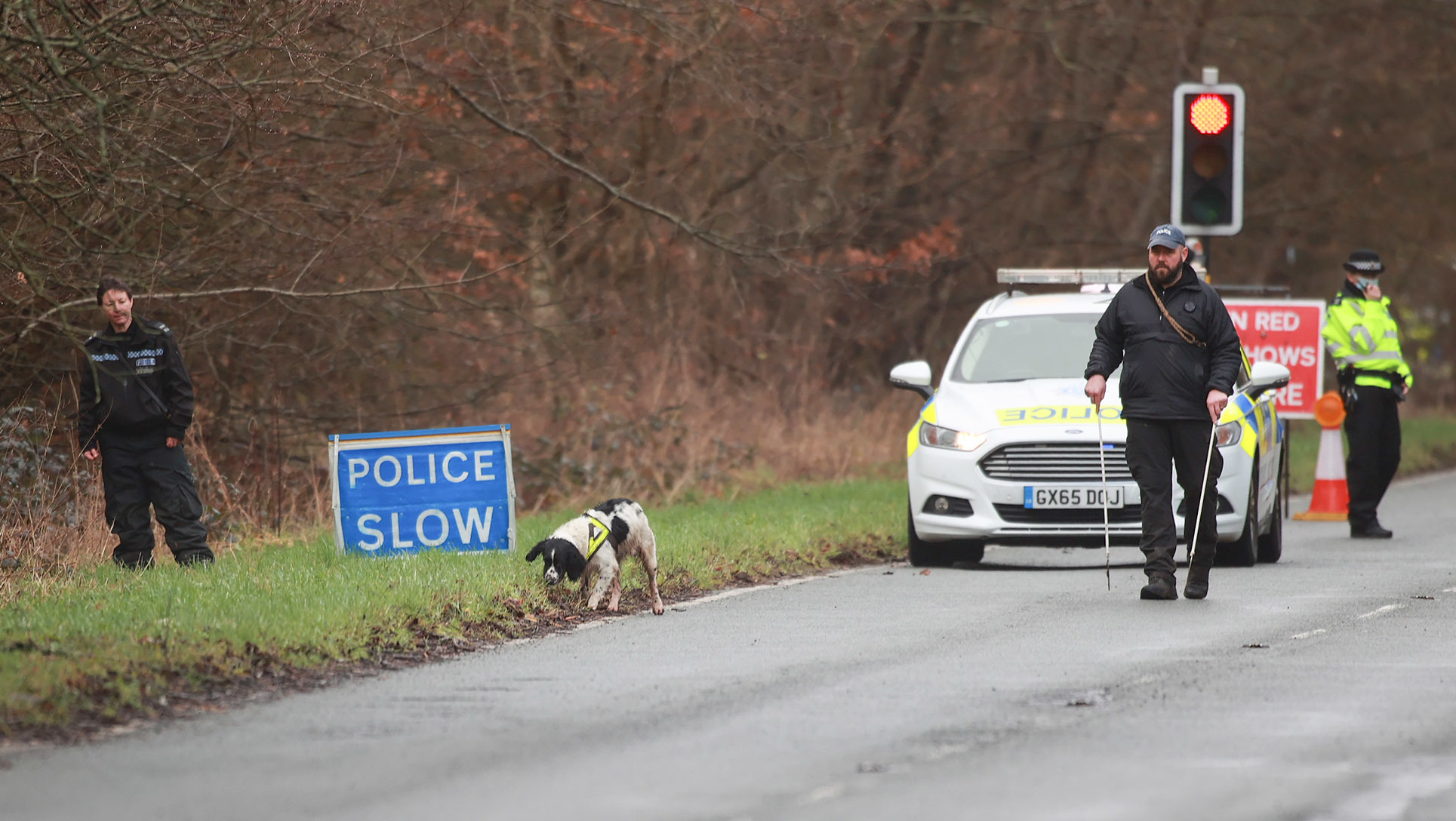 Dogs have been brought in as a police search continues after a skull was found near a layby in Chilgrove, near Chichester