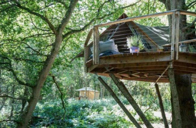 The Undercover Woodland Treehouse in West Sussex - AirBnb