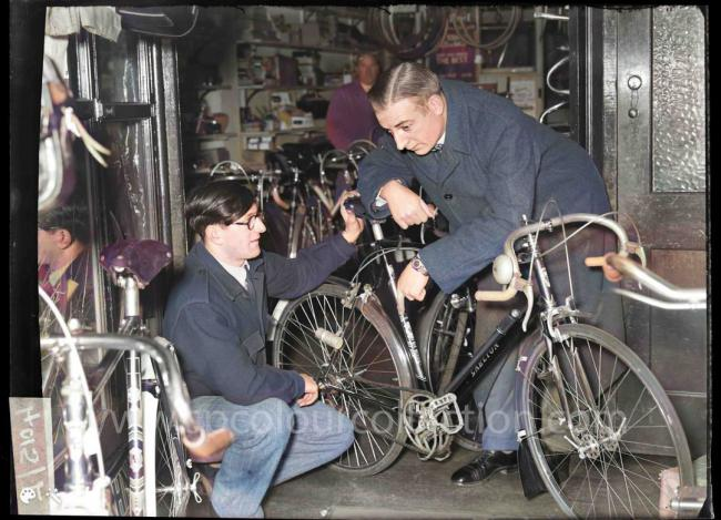 George Hills Cycle Shop, Brighton, 1951