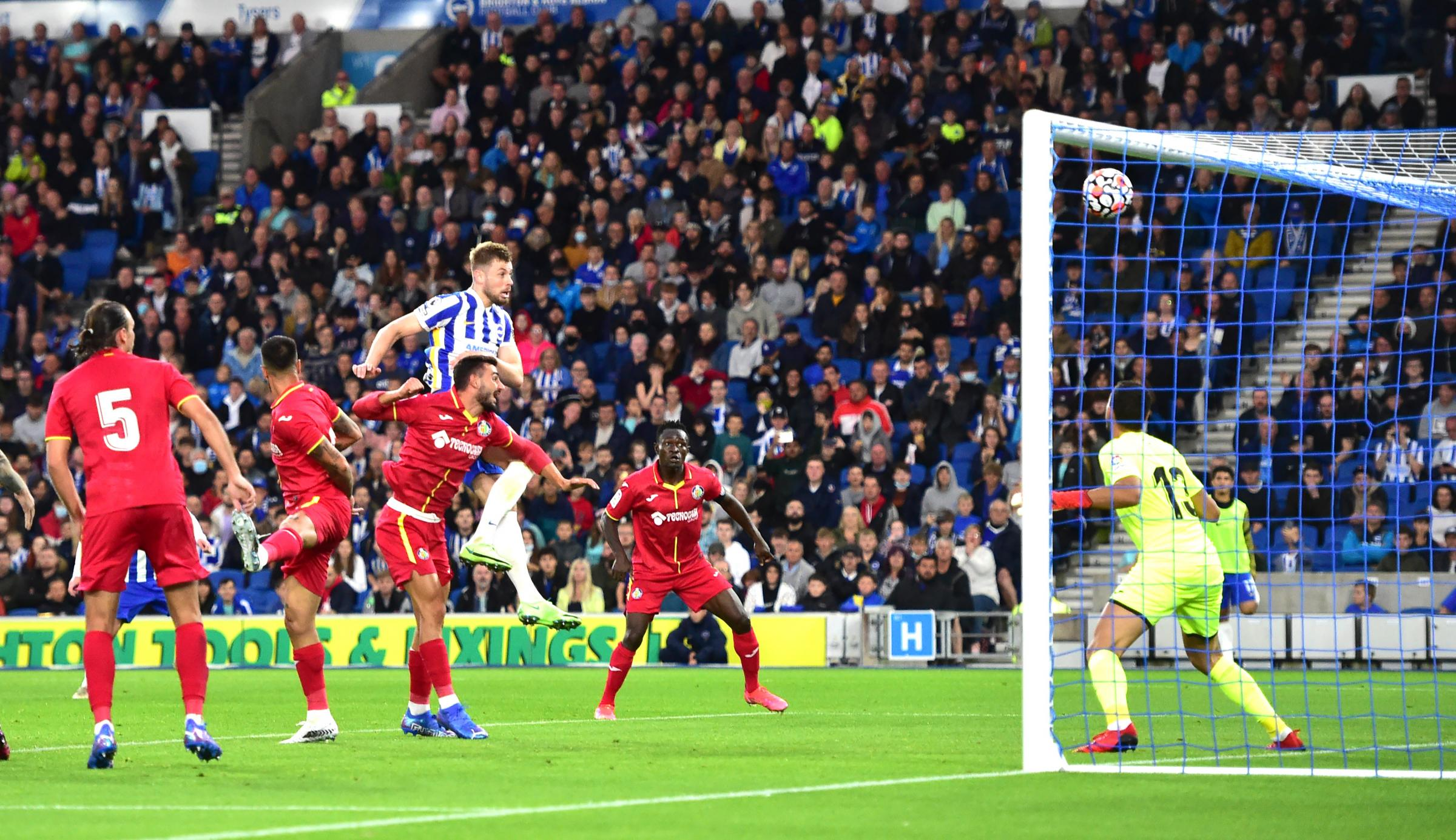 Adam Webster urges Brighton to be better in both boxes