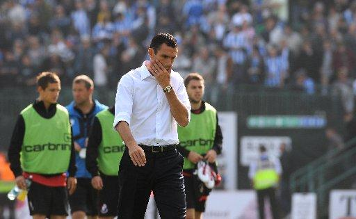 NO RUSH: Gus Poyet will not change Albion's style