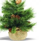 Curb the excesses this Christmas with a small but beautiful tree