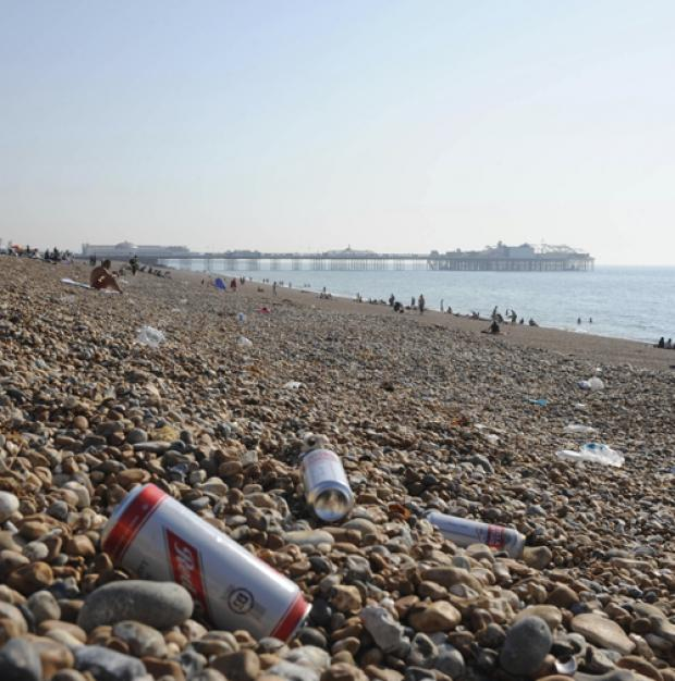DON'T USE BEACH AS BIN: Litter strewn over Brighton beach