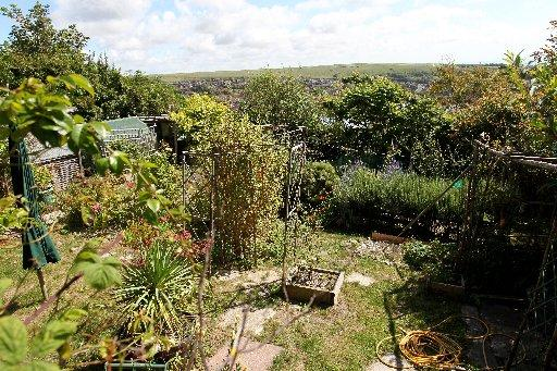 Allotments such as this one on Whitehawk Hill, Brighton, are in high demand