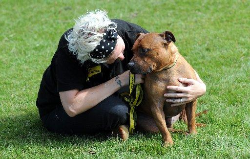 Dog Trust's  Naomi Tucker with six-year-old Staffordshire bull terrier, Flint