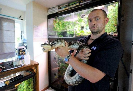 Keith Simpson-Wells from the RSPCA Reptile Rescue Centre in Patcham with a Dumrils Boa
