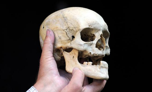 Human skull on sale at Lewes market | The Argus