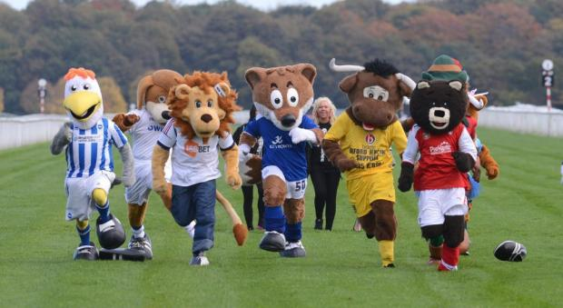 Gully all at sea in mascot charity dash