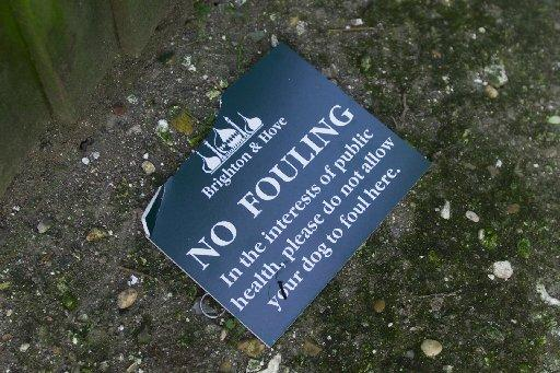 One person has received a fine despite hundreds of complaints about dog fouling in Brighton and Hove