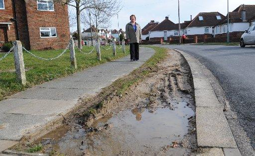 Councillor Dawn Barnett has previously complained about damage to verges in Hangleton