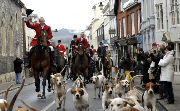 Arrest following attack on anti-hunt group