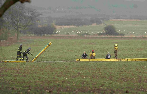 Firefighters rescued the trio from a field