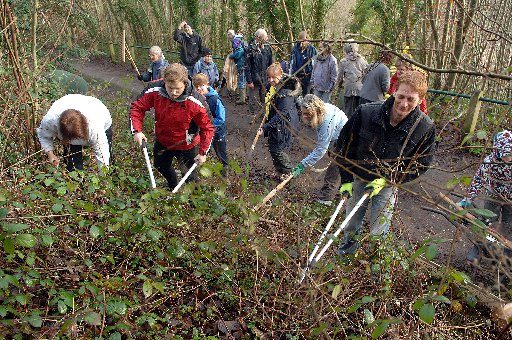 Brighton and Hove Friends of the Earth and Friends of Hollingbury and Burstead Woods clearing ground for bee habitats