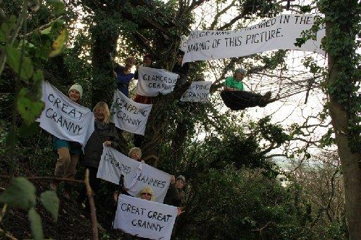 Campaigners up a tree in Combe Haven Valley – picture by Marta Lefler