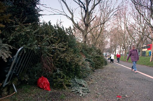 Christmas trees ready for recycling at The Level in Brighton