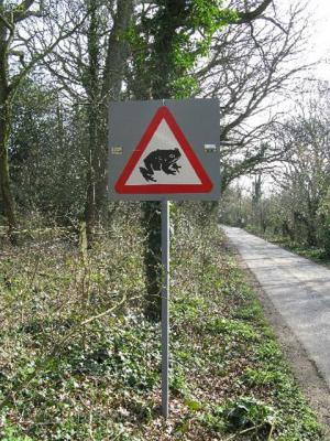 The Argus: A toad crossing sign near Wiston