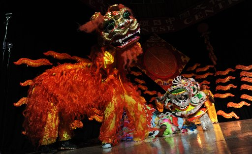 Lion dancers performing at Hove Town Hall