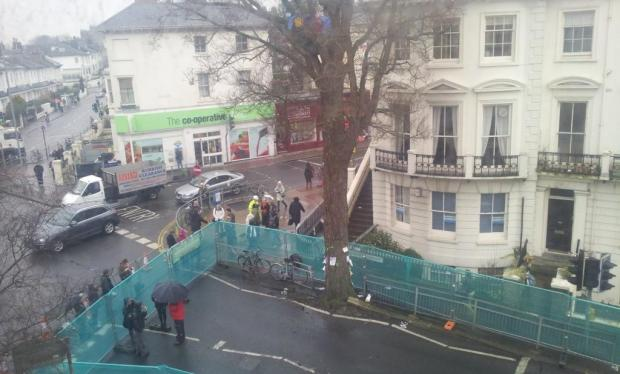 Two camp out in elm tree set for chop in Seven Dials scheme (picture: Della Collins)