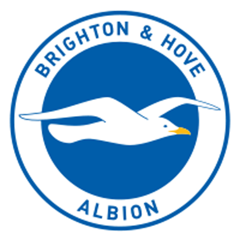 Fans fly in for Brighton and Hove Albion season finale