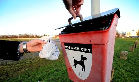 The Argus: Disgust over dearth of dog fouling fines