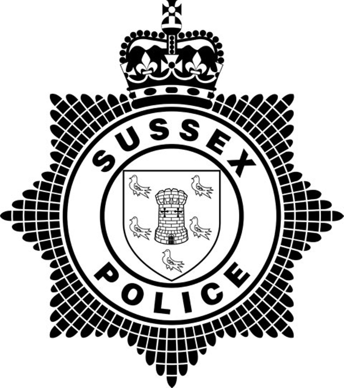 Sussex Police's recruitment of civilian investigators is 'policing