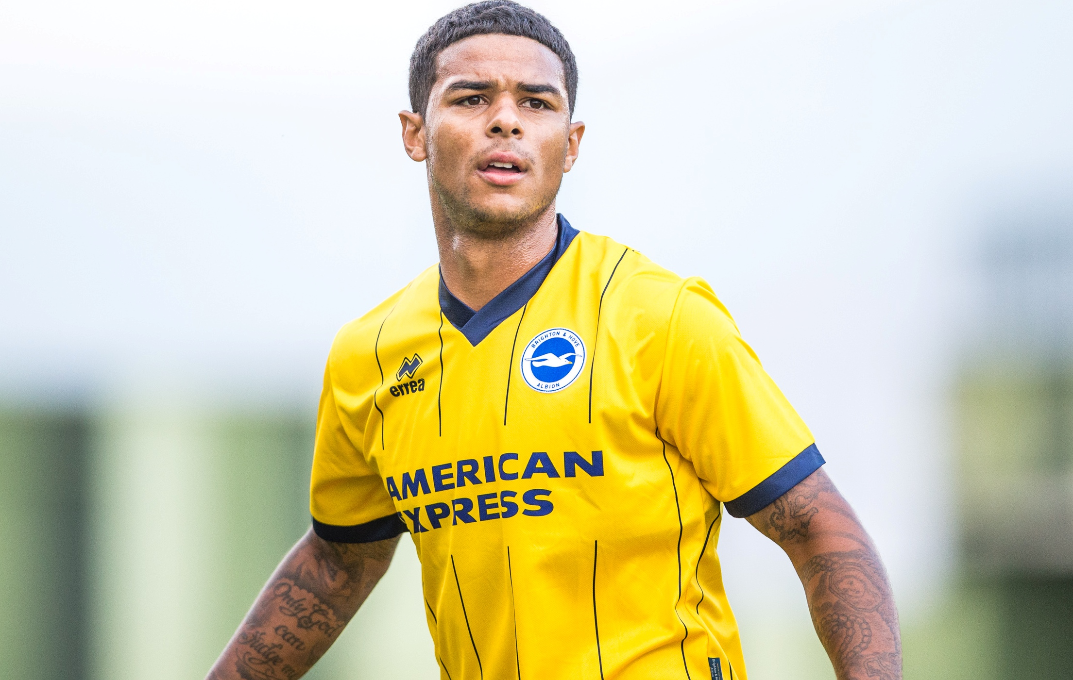 Injured Liam Bridcutt is also a target for Albion's arch-rivals