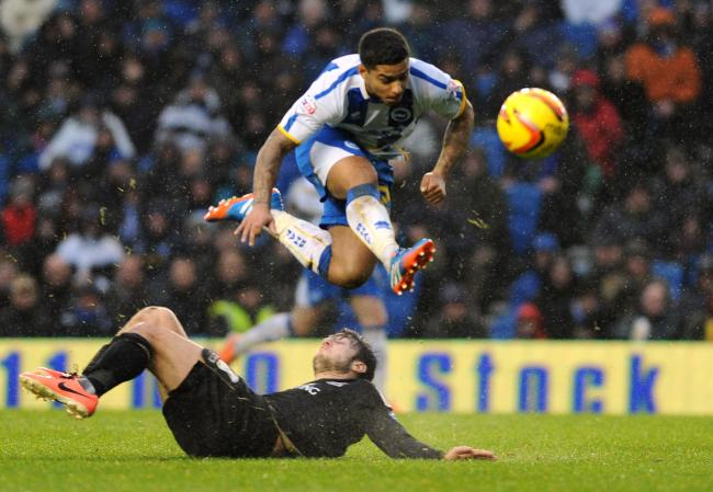 Liam Bridcutt, wants to leave Albion for Sunderland.