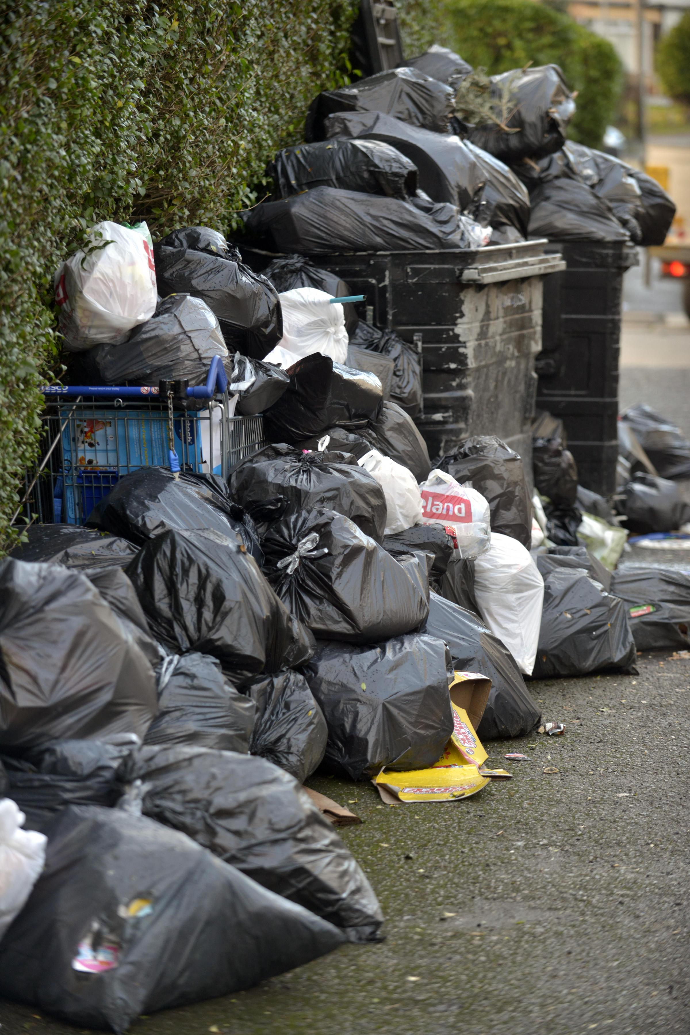 Talking Point: How would you solve the Brighton and Hove bins crisis?