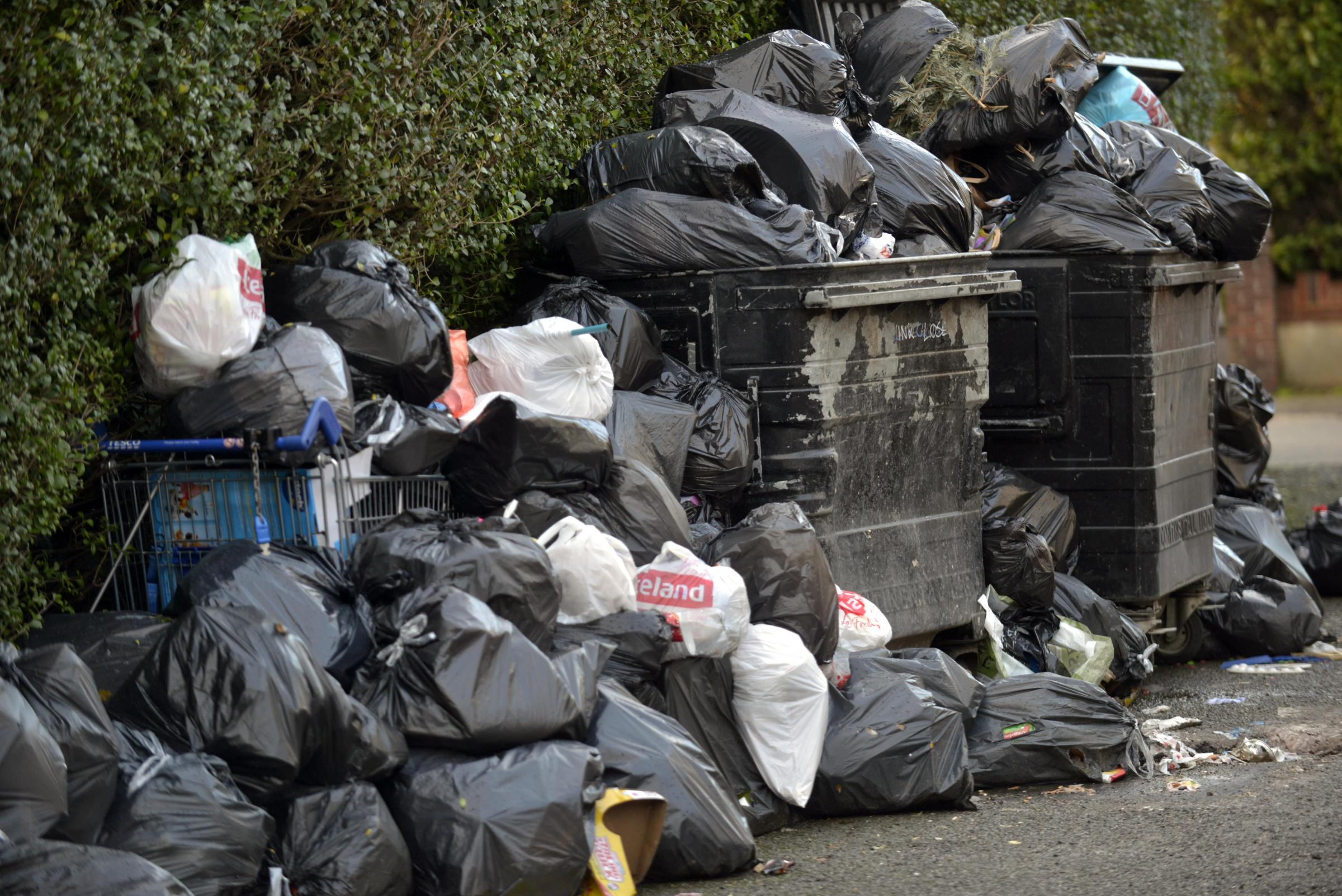 Bin misery goes on in Brighton and Hove