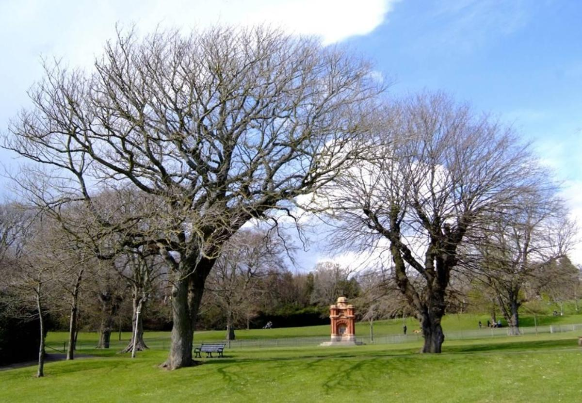 Public to have say over major makeover planned for Queens Park in Brighton