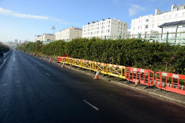 Major Conservation Project on 'Green Wall' in Brighton