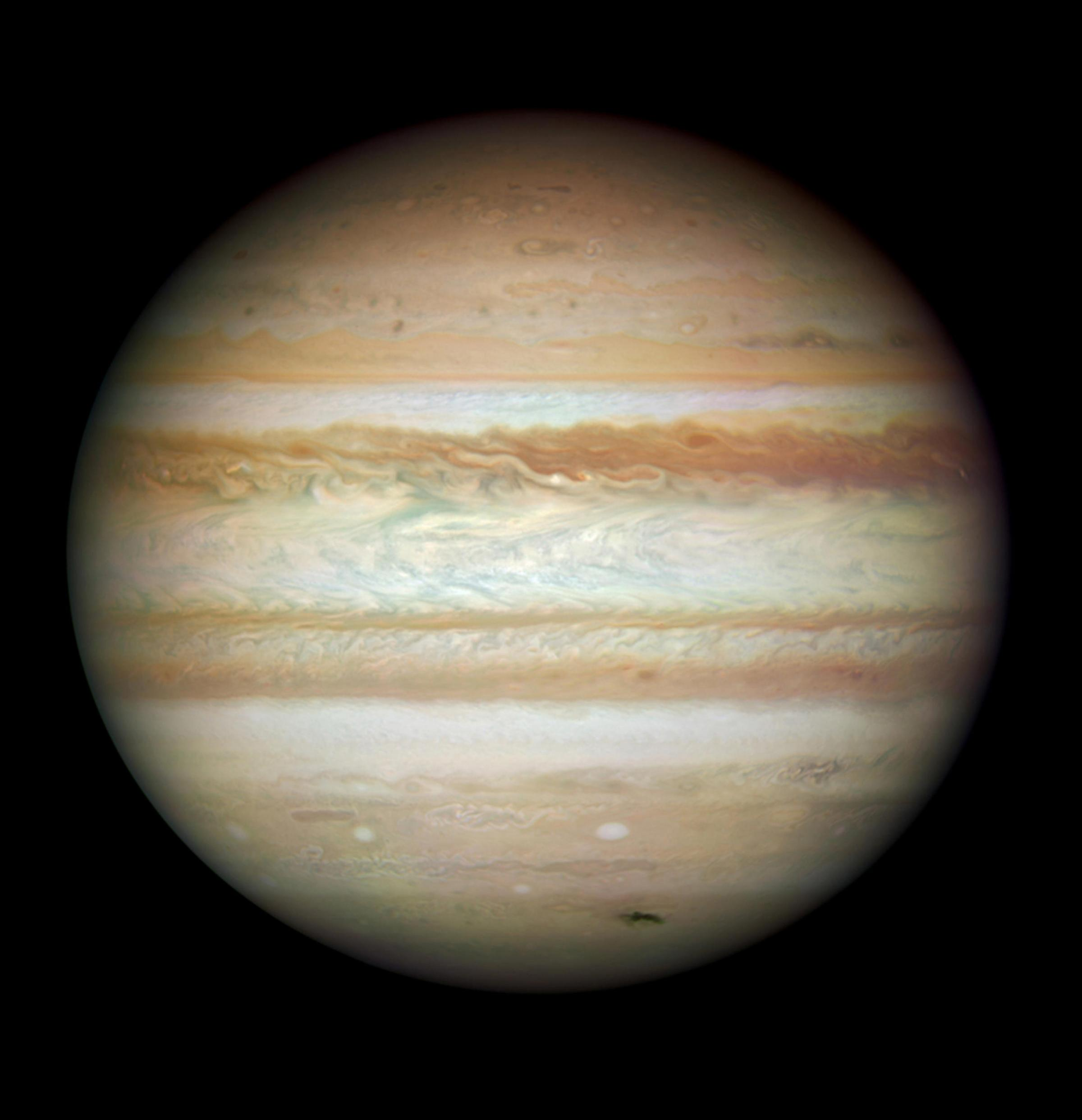 By Jupiter! Ideal conditions in Sussex for planet spotting say astronomers (Pic: NASA)