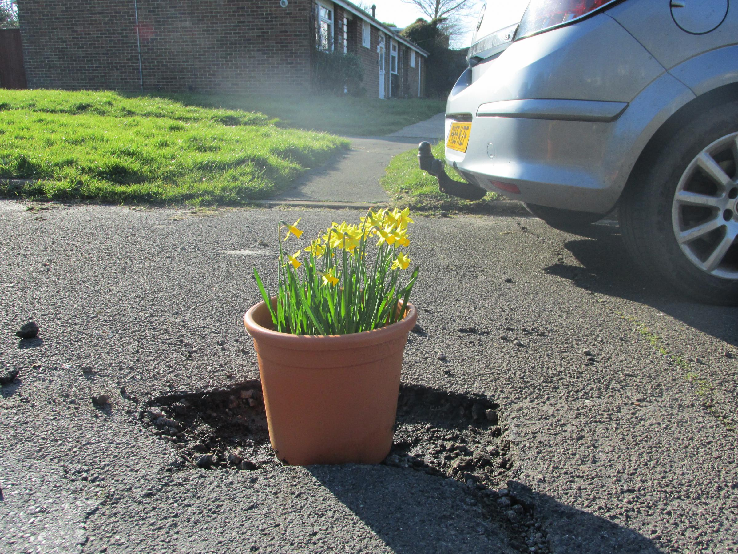 Campaigners plant flowers in Peacehaven potholes to highlight state of the roads