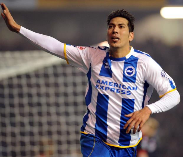 The Argus: Leo Ulloa celebrates his goal against QPR on Tuesday