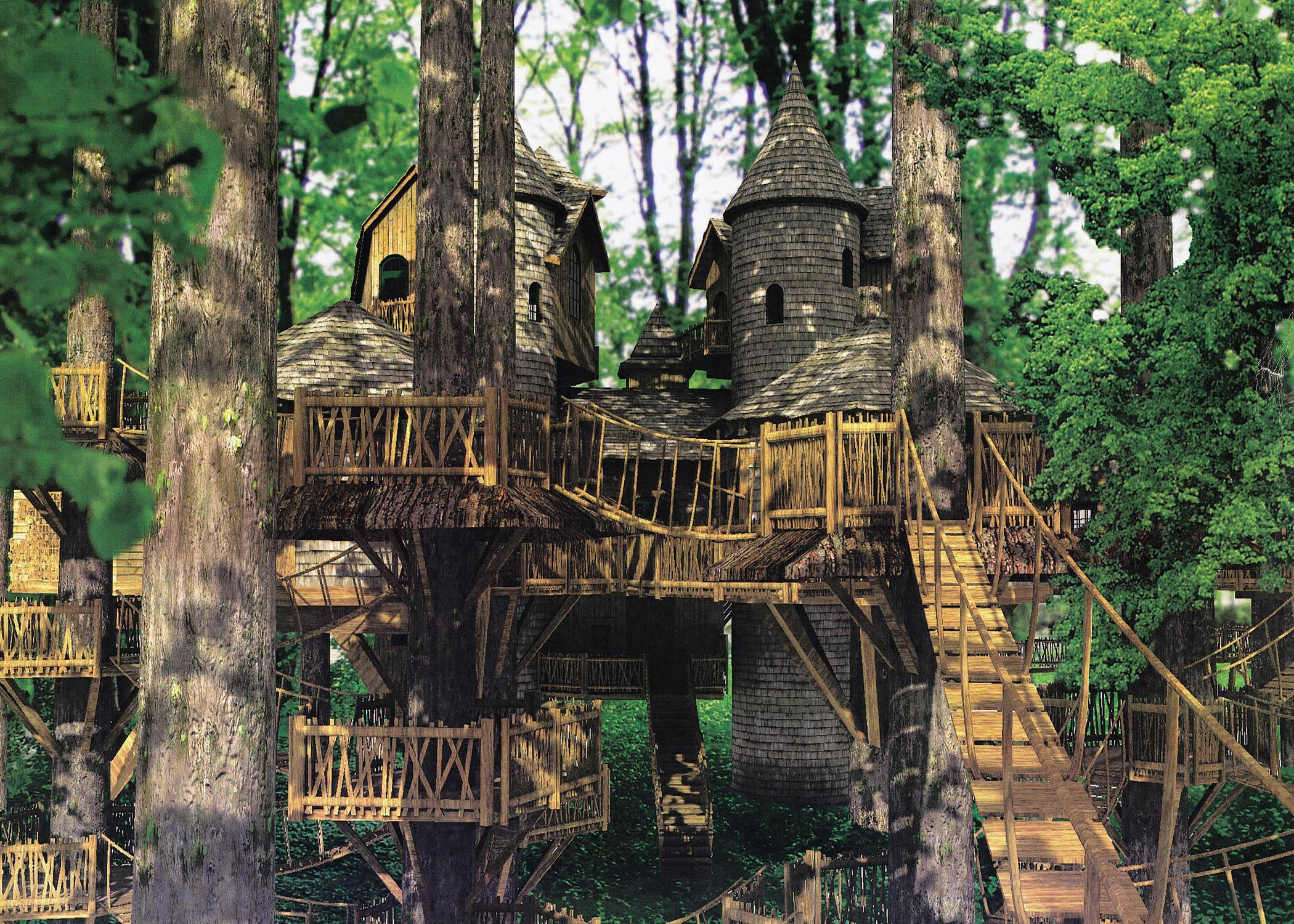 A file picture of plans for a treehouse in Northumberland