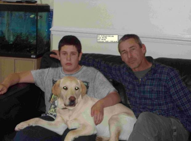 The Argus: Horror as family Labrador swallows packet of cocaine