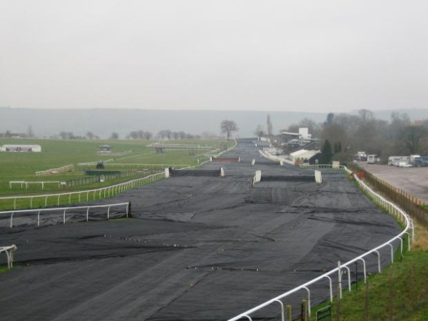 Two horses die at Plumpton Racecourse