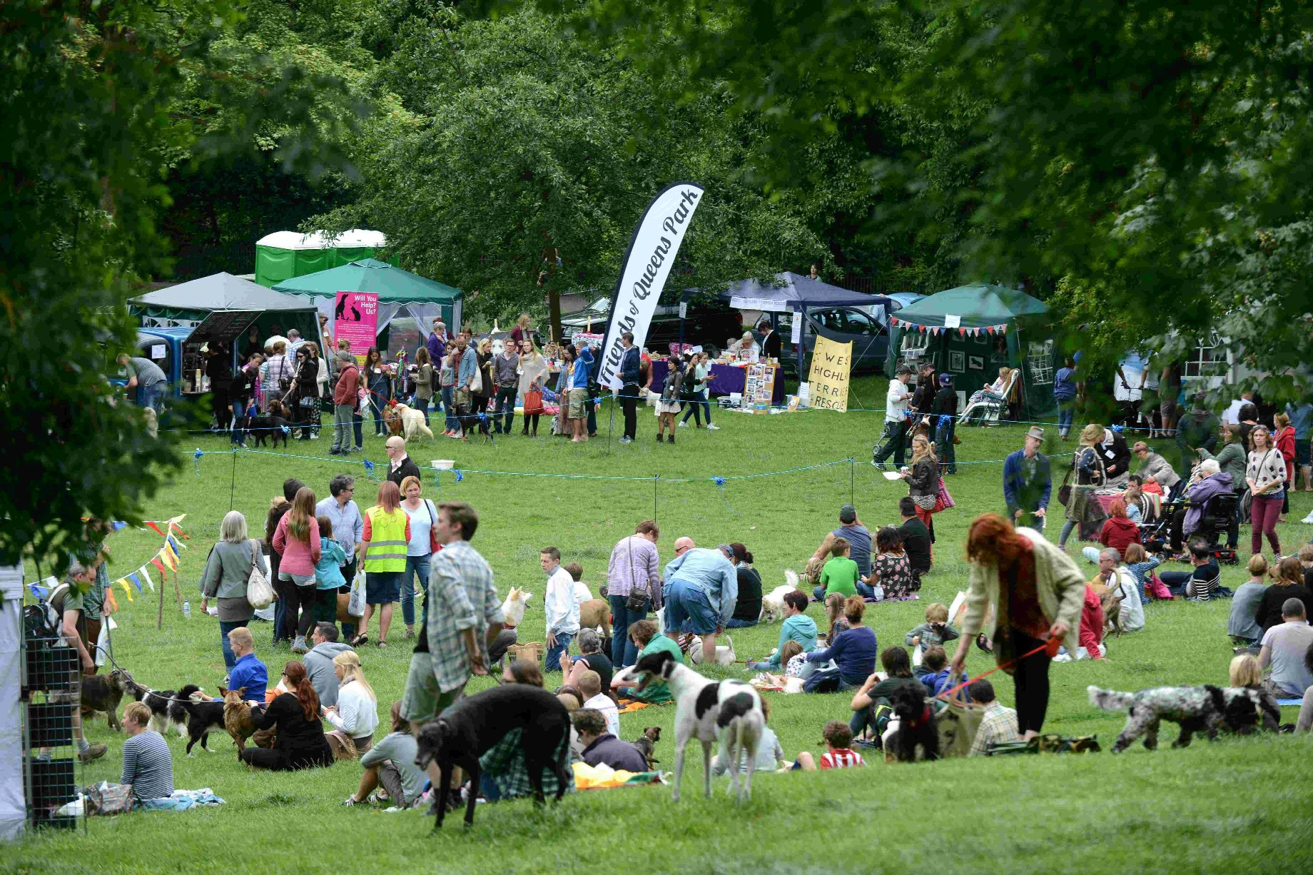 Waggy tails at fun dog show