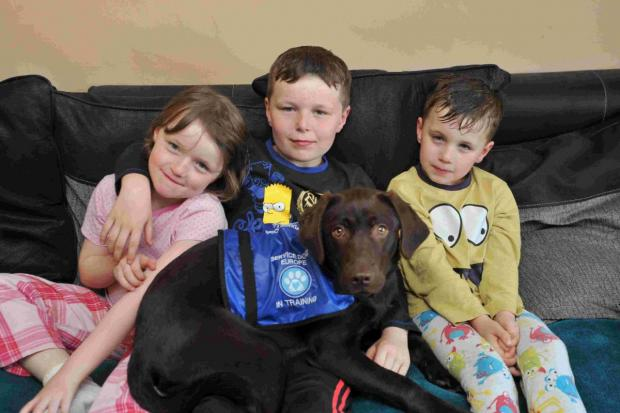 Katie, Harvey and Leo with Hetty the chocolate labrador