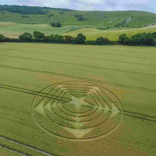 The mysterious crop circle