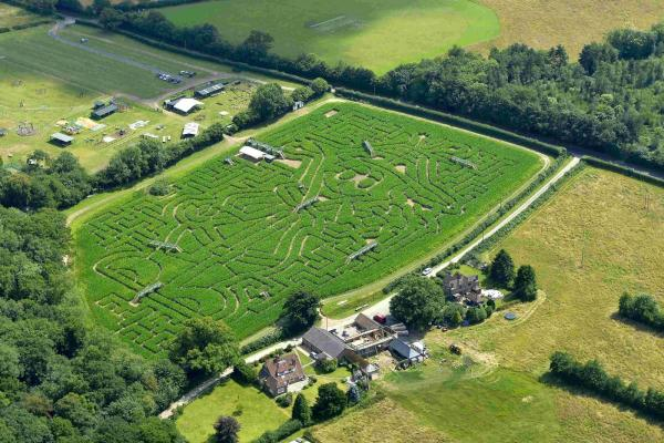 The maize maze that is sure to amaze