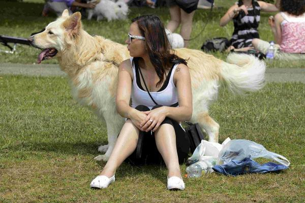Dogs and their owners flocked to the annual Pride Dog Show held at Hove RFC